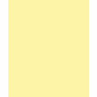 My Colors Cardstock - My Minds Eye - 8.5 x 11 Classic Cardstock - Yellow