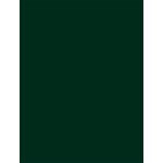 My Colors Cardstock - My Minds Eye - 8.5 x 11 Classic Cardstock - Forest Green