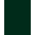My Colors Cardstock - My Mind's Eye - 8.5 x 11 Classic Cardstock - Forest Green
