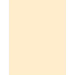 My Colors Cardstock - My Minds Eye - 8.5 x 11 Classic Cardstock - Ivory
