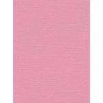 My Colors Cardstock - My Minds Eye - 8.5 x 11 Canvas Cardstock - Sweetie Pie
