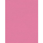 My Colors Cardstock - My Minds Eye - 8.5 x 11 Canvas Cardstock - Pink Punch