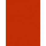 My Colors Cardstock - My Minds Eye - 8.5 x 11 Canvas Cardstock - Harvest Orange