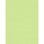 My Colors Cardstock - My Minds Eye - 8.5 x 11 Canvas Cardstock - Lime Pop