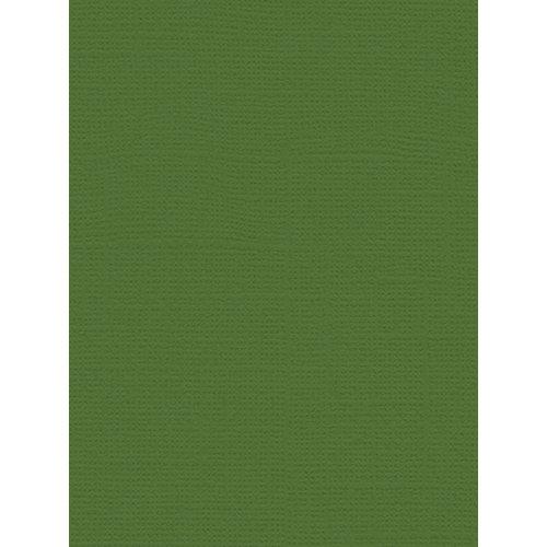 My Colors Cardstock - My Minds Eye - 8.5 x 11 Canvas Cardstock - Desert Cactus