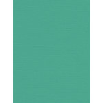My Colors Cardstock - My Minds Eye - 8.5 x 11 Canvas Cardstock - Seafoam