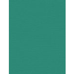 My Colors Cardstock - My Minds Eye - 8.5 x 11 Canvas Cardstock - Caribbean Sea