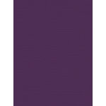 My Colors Cardstock - My Minds Eye - 8.5 x 11 Canvas Cardstock - Grape Vine