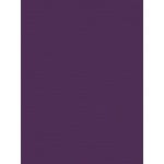My Colors Cardstock - My Mind's Eye - 8.5 x 11 Canvas Cardstock - Grape Vine