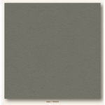 My Colors Cardstock - My Minds Eye - 12 x 12 Heavyweight Cardstock - Slate