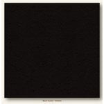 My Colors Cardstock - My Minds Eye - 12 x 12 Heavyweight Cardstock - Black Suede