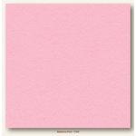 My Colors Cardstock - My Minds Eye - 12 x 12 Heavyweight Cardstock - Ballerina Pink
