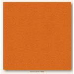 My Colors Cardstock - My Minds Eye - 12 x 12 Heavyweight Cardstock - Autumn Leaves
