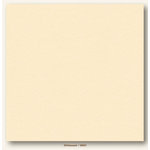 My Colors Cardstock - My Minds Eye - 12 x 12 Heavyweight Cardstock - Whitewash