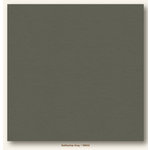 My Colors Cardstock - My Minds Eye - 12 x 12 Heavyweight Cardstock - Battleship Gray