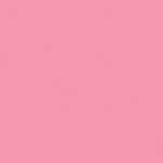 My Colors Cardstock - My Minds Eye - 12 x 12 Classic Colors Cardstock - Petal Pink