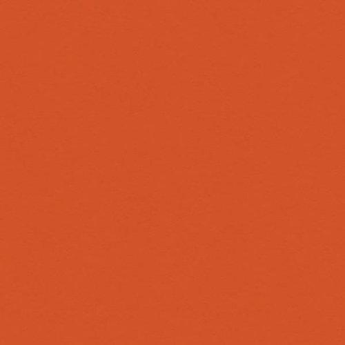 My Colors Cardstock - My Minds Eye - 12 x 12 Classic Colors Cardstock - Papaya