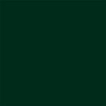 My Colors Cardstock - My Minds Eye - 12 x 12 Classic Cardstock - Forest Green
