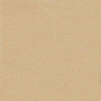 My Colors Cardstock - My Minds Eye - 12 x 12 Classic Cardstock - Kraft