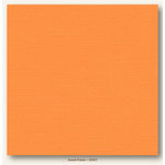 My Colors Cardstock - My Minds Eye - 12 x 12 Canvas Cardstock - Sweet Potato