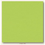 My Colors Cardstock - My Minds Eye - 12 x 12 Canvas Cardstock - Limelight