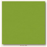 My Colors Cardstock - My Mind's Eye - 12 x 12 Canvas Cardstock - Mint Julep