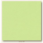 My Colors Cardstock - My Minds Eye - 12 x 12 Canvas Cardstock - Lime Pop