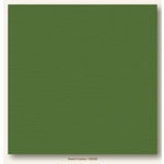 My Colors Cardstock - My Mind's Eye - 12 x 12 Canvas Cardstock - Desert Cactus