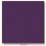 My Colors Cardstock - My Minds Eye - 12 x 12 Canvas Cardstock - Grape Vine