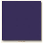 My Colors Cardstock - My Mind's Eye - 12 x 12 Canvas Cardstock - Concord Jam