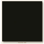 My Colors Cardstock - My Minds Eye - 12 x 12 Canvas Cardstock - Espresso Bean