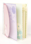 Making Memories - Ledger Collection - Spiral Journaling Book - 4x6 Inches - Pastel