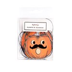 My Minds Eye - Halloween Collection - Mini Pumpkin Banner