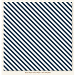 My Mind's Eye - Necessities Collection - Blues - 12 x 12 Vellum Paper - Stripe