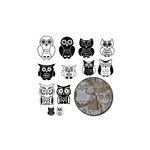 Maya Road - Kraft Owls - White