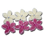 Maya Road - Trinket Blossoms Collection - Velvet Point Blossoms - Cream and Pink, CLEARANCE