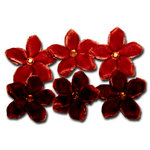 Maya Road - Trinket Blossoms Collection - Velvet Point Blossoms - Orange and Brown, CLEARANCE