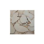 Maya Road - Wood Pieces - Vintage Birds