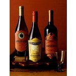 Martha Stewart Crafts - Classic Halloween Collection - Wine Labels
