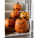 Martha Stewart Crafts - Classic Halloween Collection - Pumpkin Transfers