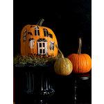 Martha Stewart Crafts - Halloween - Pumpkin Transfers - Haunted House