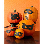 Martha Stewart Crafts - Animal Masquerade Collection - Halloween - Pumpkin Masks