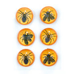 Martha Stewart Crafts - Gothic Manor Collection - Halloween - 3 Dimensional Embellishments - Insects