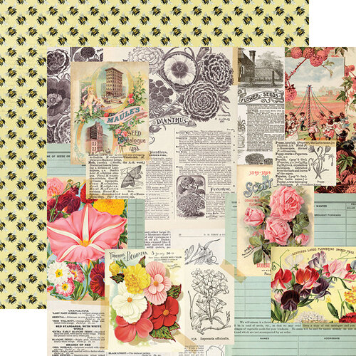 Simple Stories - Simple Vintage Garden District Collection - 12 x 12 Double Sided Paper - See the Beauty