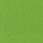 Core'dinations - Happy Colors Collection - 12 x 12 Embossed Color Core Cardstock - Nature