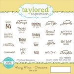 Taylored Expressions - Cling Stamp - Many Minis - Occasions