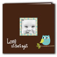 Pioneer - EZ Load Memory Album - 12 x 12 - 10 Top Loading Pages - Printed Designer Frame - Baby Owl - Blue