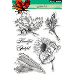Penny Black - Clear Acrylic Stamps - Grateful