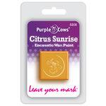 Purple Cows Incorporated - Encaustic Paint Cubes - Citrus Sunrise