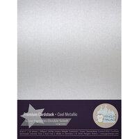 Penguin Palace - 8.5 x 11 Heavyweight Premium Cardstock - Cool Metallic
